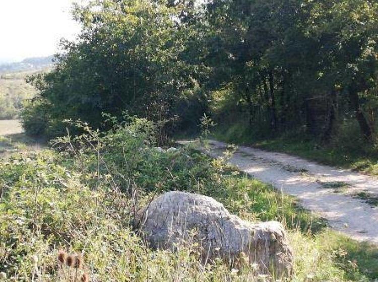Rustico in vendita, via colle della valle, Civitella Paganico