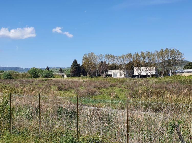 Terreno terziario in vendita, viale Europa, Germaneto, Catanzaro